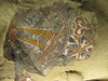 pictos in a cave